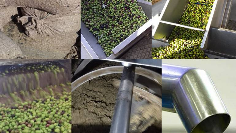 2019 New Harvest – Extra Virgin Olive Oil